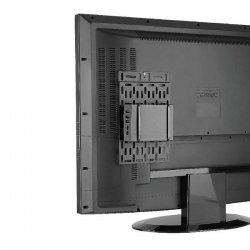 NewStar Apple TV Mount - Suporte para leitor multimédia / mini PC - preto - montável em parede, na televisão, montagem de supor